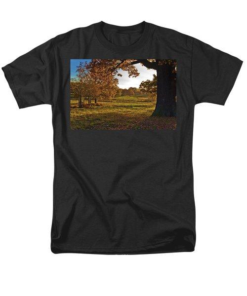 Sunny Richmond Autumn Men's T-Shirt  (Regular Fit) by Maj Seda