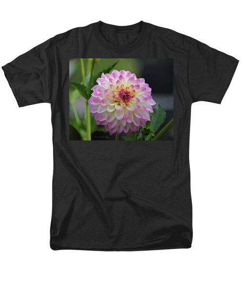 The Beautiful Dahlia Men's T-Shirt  (Regular Fit) by Jeanette C Landstrom