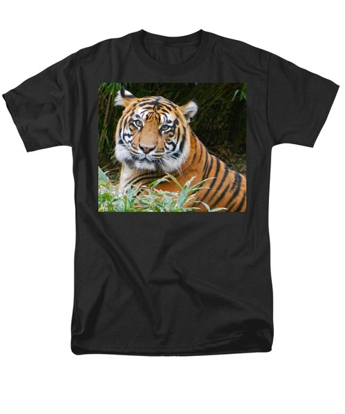The Eyes Of A Sumatran Tiger Men's T-Shirt  (Regular Fit) by Emmy Marie Vickers