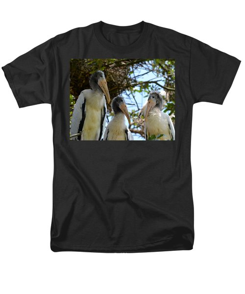 Triplet Wood Stork Nestlings Men's T-Shirt  (Regular Fit) by Richard Bryce and Family