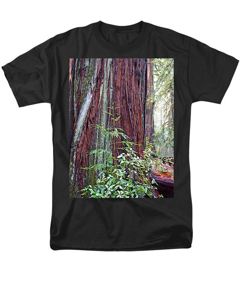 Trunk Of Coastal Redwood In Armstrong Redwoods State Preserve Near Guerneville-ca Men's T-Shirt  (Regular Fit) by Ruth Hager