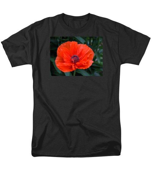 Village Poppy Men's T-Shirt  (Regular Fit)