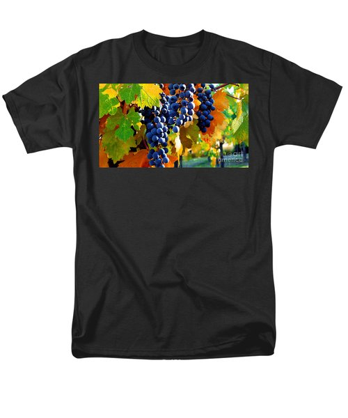 Vineyard 2 Men's T-Shirt  (Regular Fit)