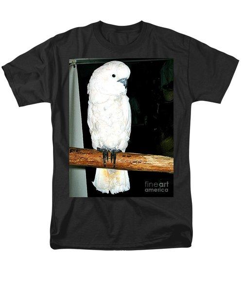White Cockatiel-loreto Mx. Men's T-Shirt  (Regular Fit) by Jay Milo