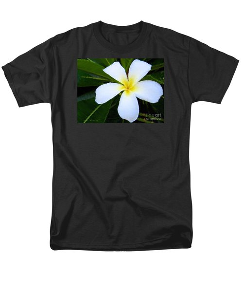 White Plumeria Men's T-Shirt  (Regular Fit) by Anthony Fishburne