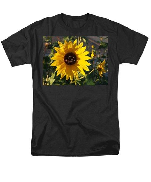 Wild Sunflower Men's T-Shirt  (Regular Fit)