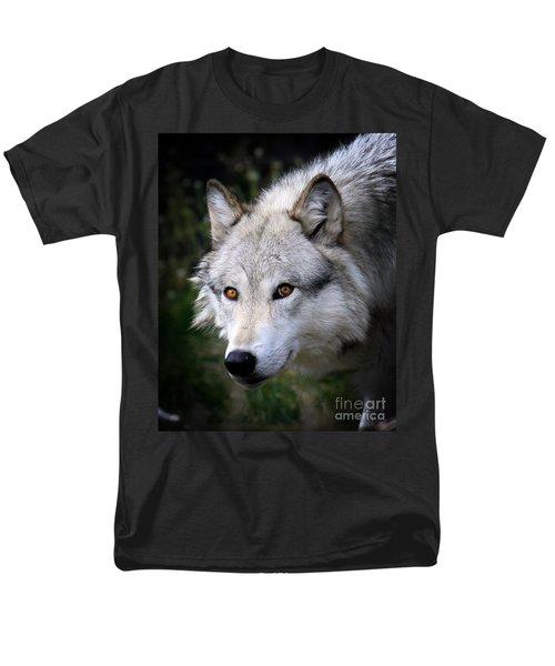 Wolf Stare Men's T-Shirt  (Regular Fit) by Steve McKinzie
