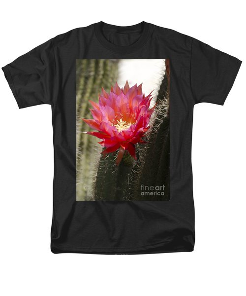 Red Cactus Flower Men's T-Shirt  (Regular Fit) by Jim And Emily Bush