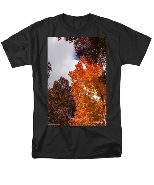 Men's T-Shirt  (Regular Fit) featuring the photograph Autumn Looking Up by Mick Anderson