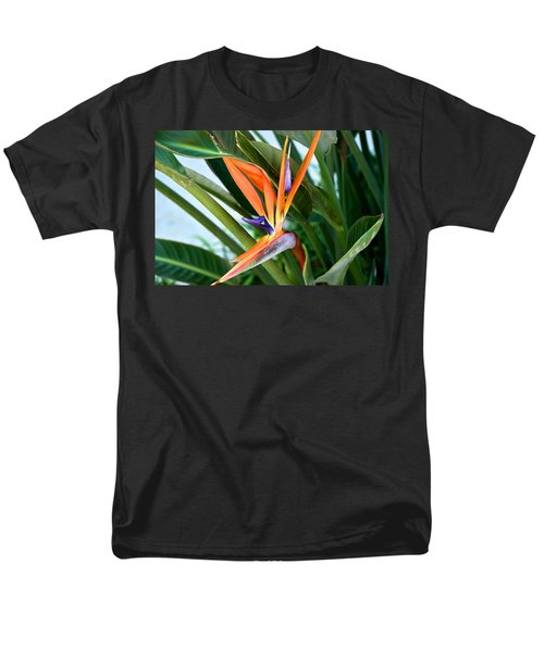 Bird Men's T-Shirt  (Regular Fit) by Joseph Yarbrough