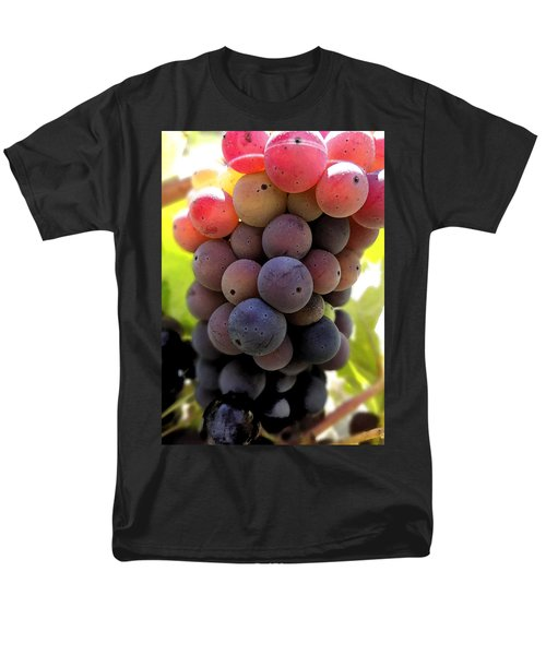Bunch Of Ripening Grapes Men's T-Shirt  (Regular Fit) by Anne Mott