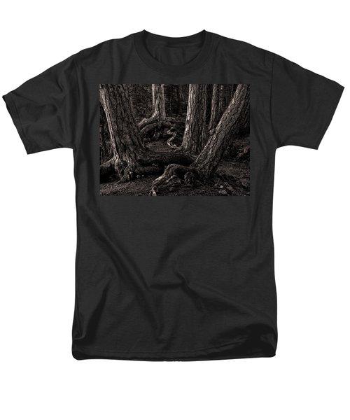 Evening Pines Men's T-Shirt  (Regular Fit)
