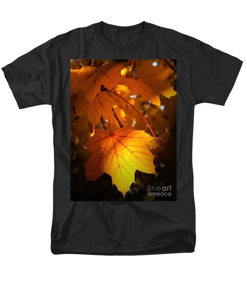 Maple At First Light Men's T-Shirt  (Regular Fit) by Sue Stefanowicz