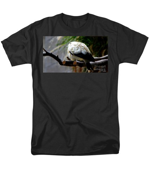 Men's T-Shirt  (Regular Fit) featuring the photograph Pied Imperial Pigeon by Davandra Cribbie