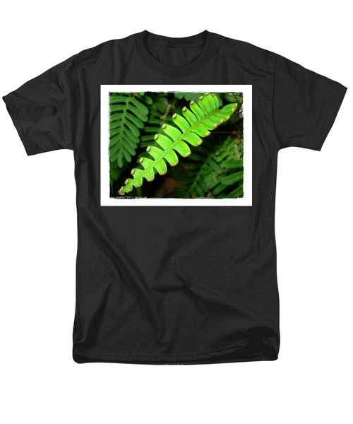 Polypody Men's T-Shirt  (Regular Fit) by Judi Bagwell
