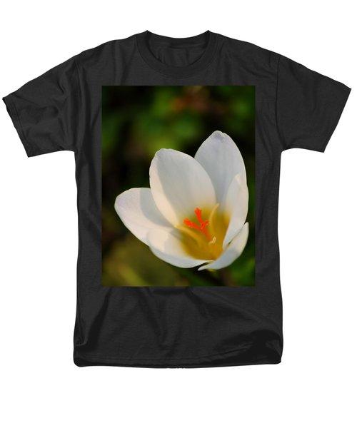 Pretty White Crocus Men's T-Shirt  (Regular Fit) by JD Grimes