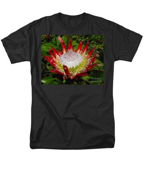 Red King Protea Men's T-Shirt  (Regular Fit) by Rebecca Margraf