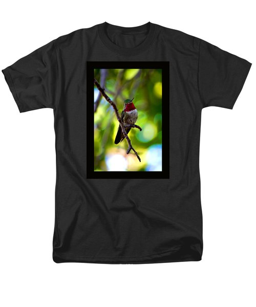 Men's T-Shirt  (Regular Fit) featuring the photograph Ruby Throated Hummingbird by Susanne Still