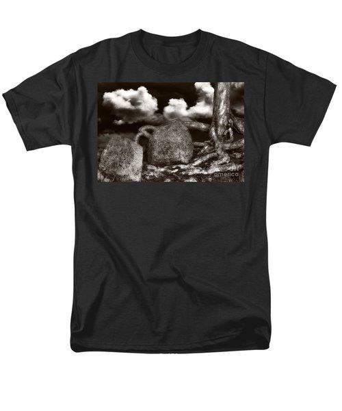Stones And Roots Men's T-Shirt  (Regular Fit)
