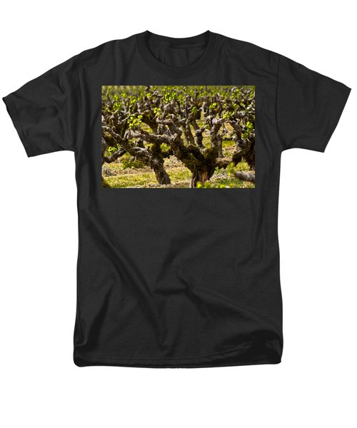 Wine On The Vine Men's T-Shirt  (Regular Fit) by Colleen Coccia