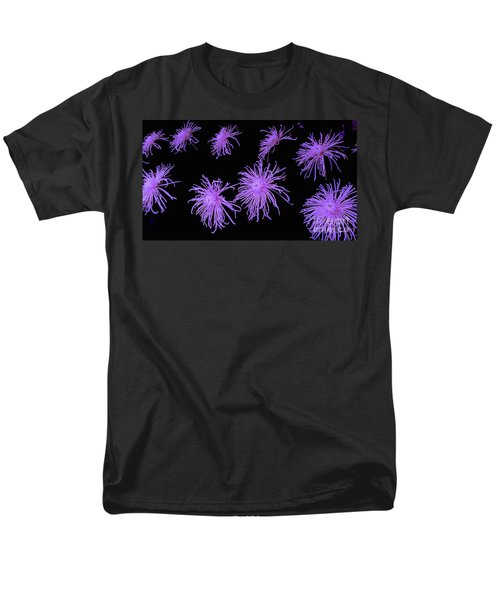 Chrysanthemums In Purple Men's T-Shirt  (Regular Fit) by Jeannie Rhode
