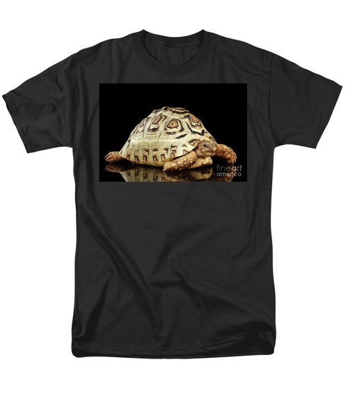 Closeup Leopard Tortoise Albino,stigmochelys Pardalis Turtle With White Shell On Isolated Black Back Men's T-Shirt  (Regular Fit) by Sergey Taran