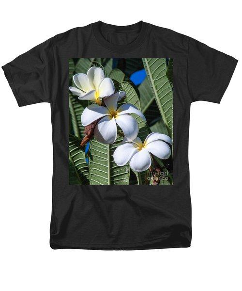 Plumeria Men's T-Shirt  (Regular Fit) by Roselynne Broussard