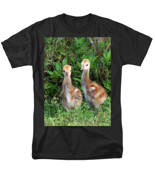 Sandhill Crane Chicks  Men's T-Shirt  (Regular Fit) by Chris Mercer