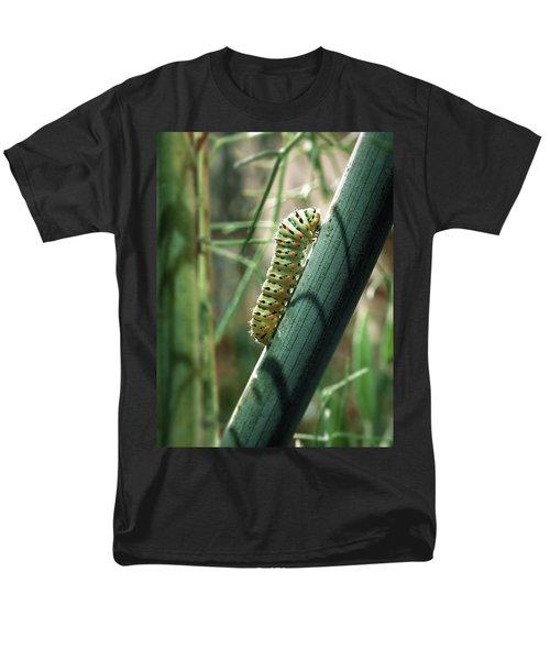 Swallowtail Caterpillar Men's T-Shirt  (Regular Fit)