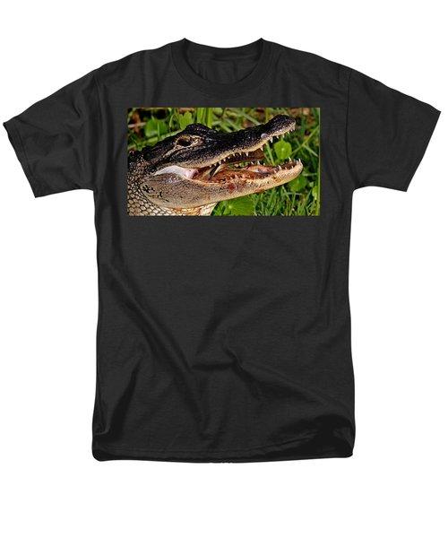 American Alligator Men's T-Shirt  (Regular Fit)