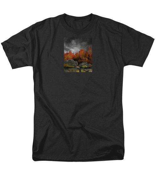 4004 Men's T-Shirt  (Regular Fit) by Peter Holme III