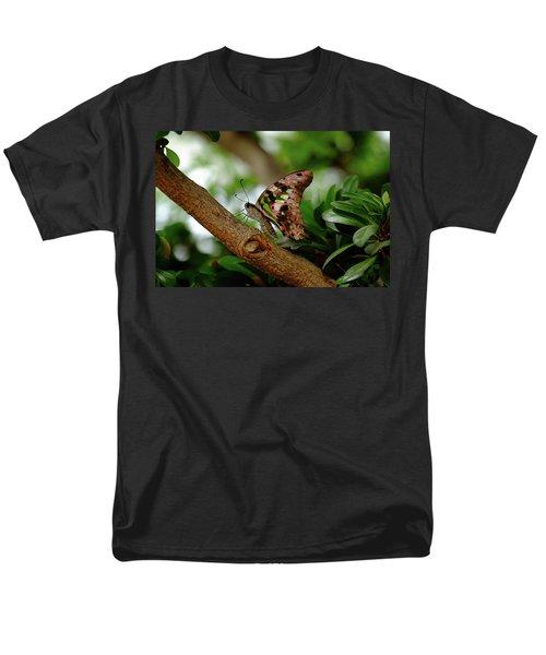 Tailed Jay Men's T-Shirt  (Regular Fit) by Ronda Ryan
