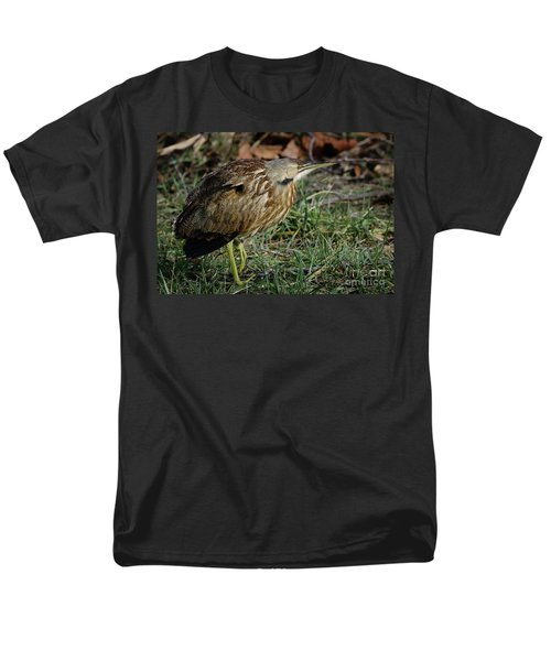 American Bittern Men's T-Shirt  (Regular Fit) by Douglas Stucky