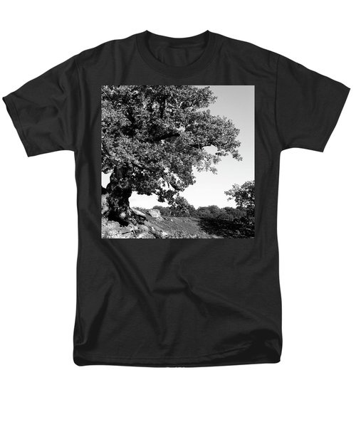 Ancient Oak, Bradgate Park Men's T-Shirt  (Regular Fit) by John Edwards