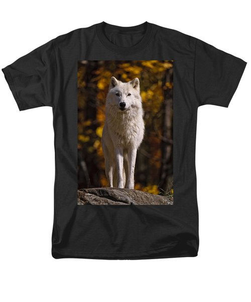 Men's T-Shirt  (Regular Fit) featuring the photograph Arctic Wolf On Rocks by Michael Cummings