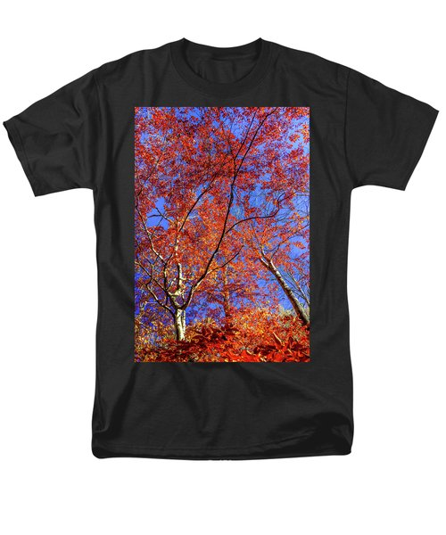 Autumn Blaze Men's T-Shirt  (Regular Fit) by Karen Wiles