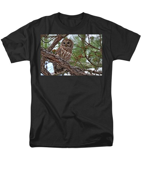 Barred Owl Perched In Tree Men's T-Shirt  (Regular Fit)