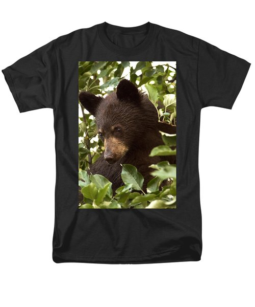 Bear Cub In Apple Tree2 Men's T-Shirt  (Regular Fit) by Loni Collins