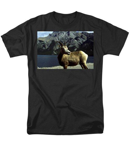 Bighorn Sheep Men's T-Shirt  (Regular Fit) by Sally Weigand
