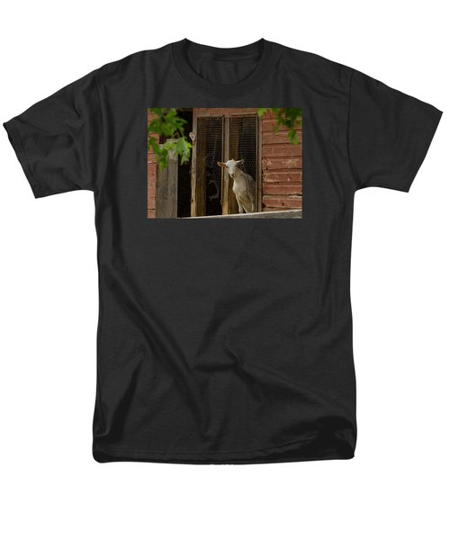 Billy Goat Men's T-Shirt  (Regular Fit) by Dan Traun