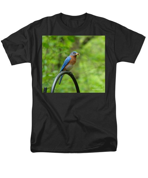 Bluebird Catches Worm Men's T-Shirt  (Regular Fit) by Rand Herron