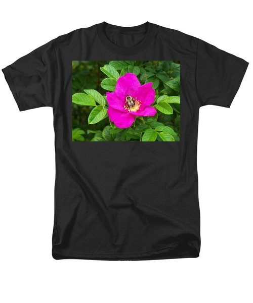 Bumble Bee On A Wild Rose Men's T-Shirt  (Regular Fit) by Joy Nichols