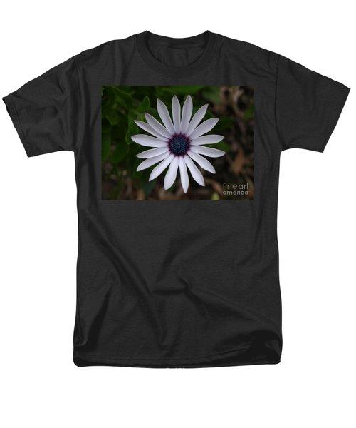 Cape Daisy Men's T-Shirt  (Regular Fit) by Richard Brookes