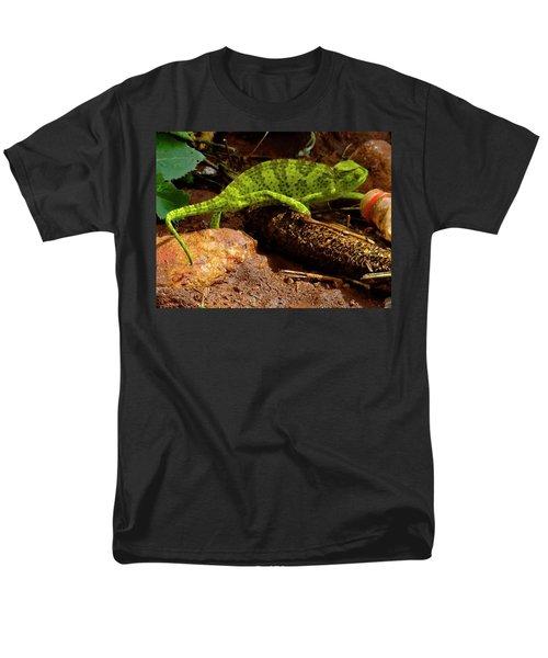 Chameleon Struts His Stuff Men's T-Shirt  (Regular Fit) by Exploramum Exploramum