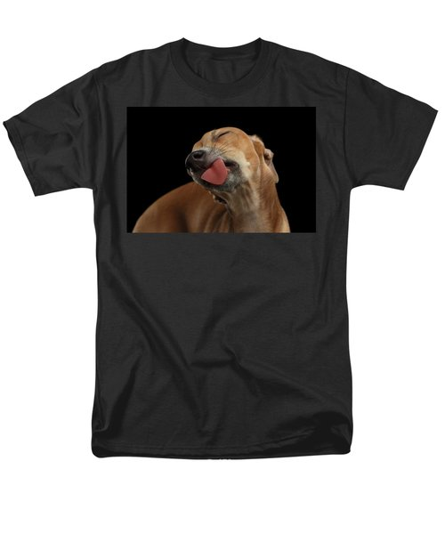 Closeup Cute Italian Greyhound Dog Licked With Pleasure Isolated Black Men's T-Shirt  (Regular Fit) by Sergey Taran