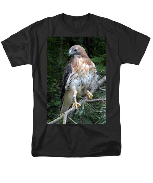 Coopers Hawk Men's T-Shirt  (Regular Fit) by Dave Mills