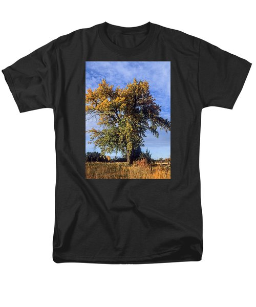 Cottonwood #3 Colorado Ranch Country In Fall Men's T-Shirt  (Regular Fit) by John Brink