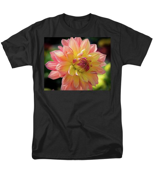 Dahlia In The Sunshine Men's T-Shirt  (Regular Fit) by Phil Abrams