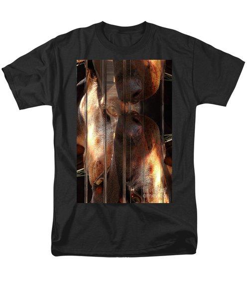 Doberman Pincher Men's T-Shirt  (Regular Fit) by Liane Wright
