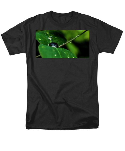 Men's T-Shirt  (Regular Fit) featuring the photograph Droplets On Stem And Leaves by Darcy Michaelchuk